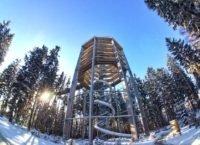 Stezka korunami stromů Lipno otevřena celou zimu